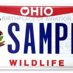 Northern Cardinal License Plate